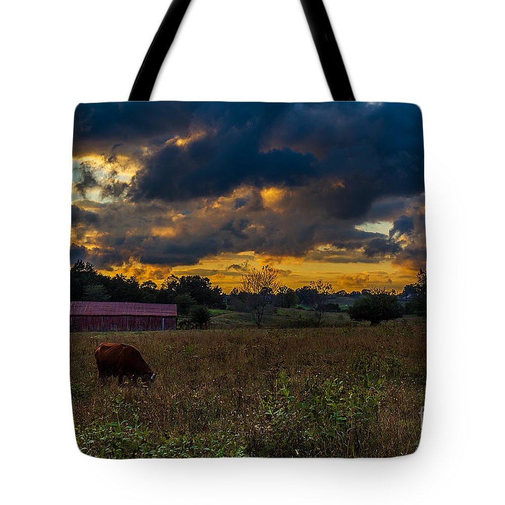 Rural Tote Bag featuring the photograph Evening On The Farm One by Ken Frischkorn