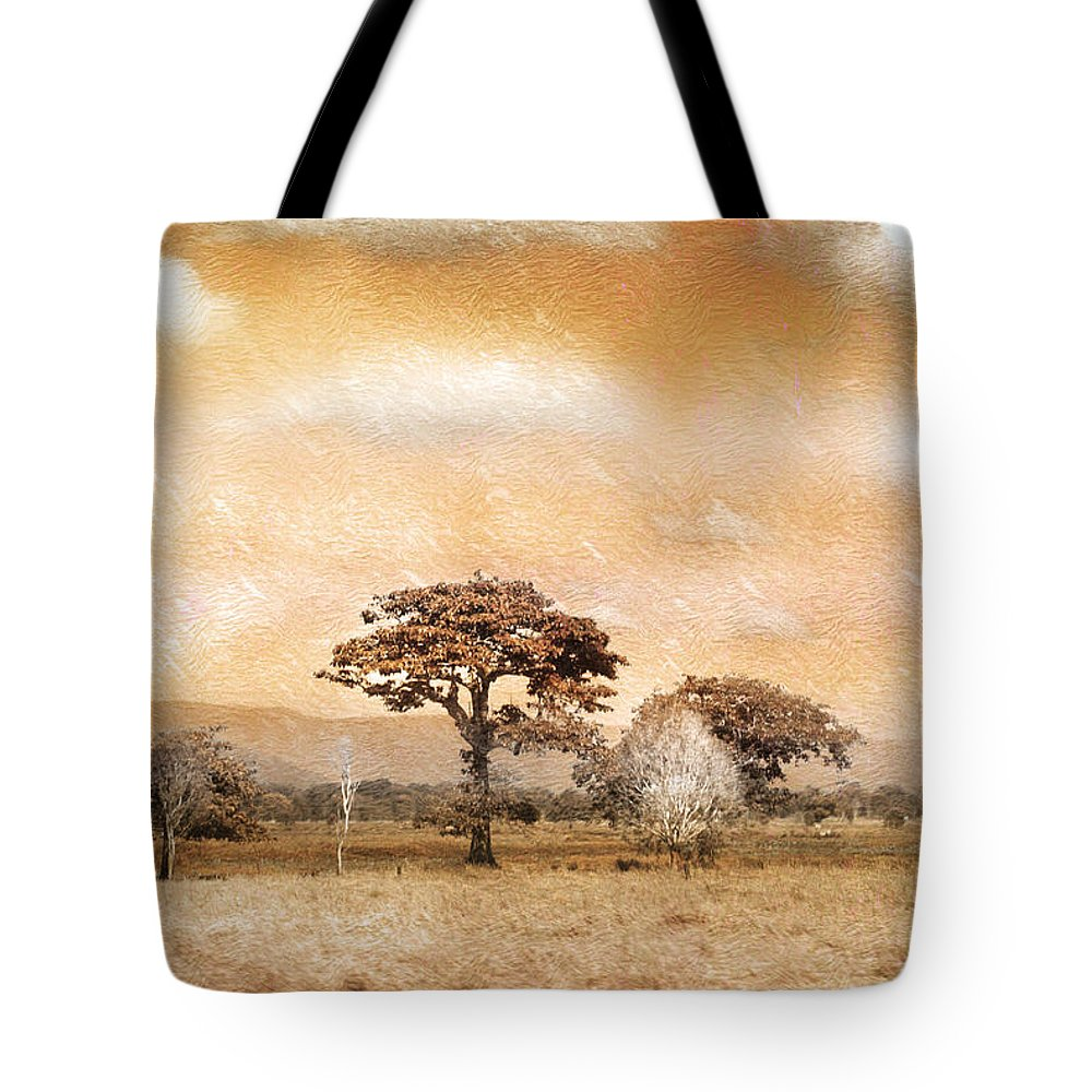 Landscapes Tote Bag featuring the photograph Evening Showers by Holly Kempe