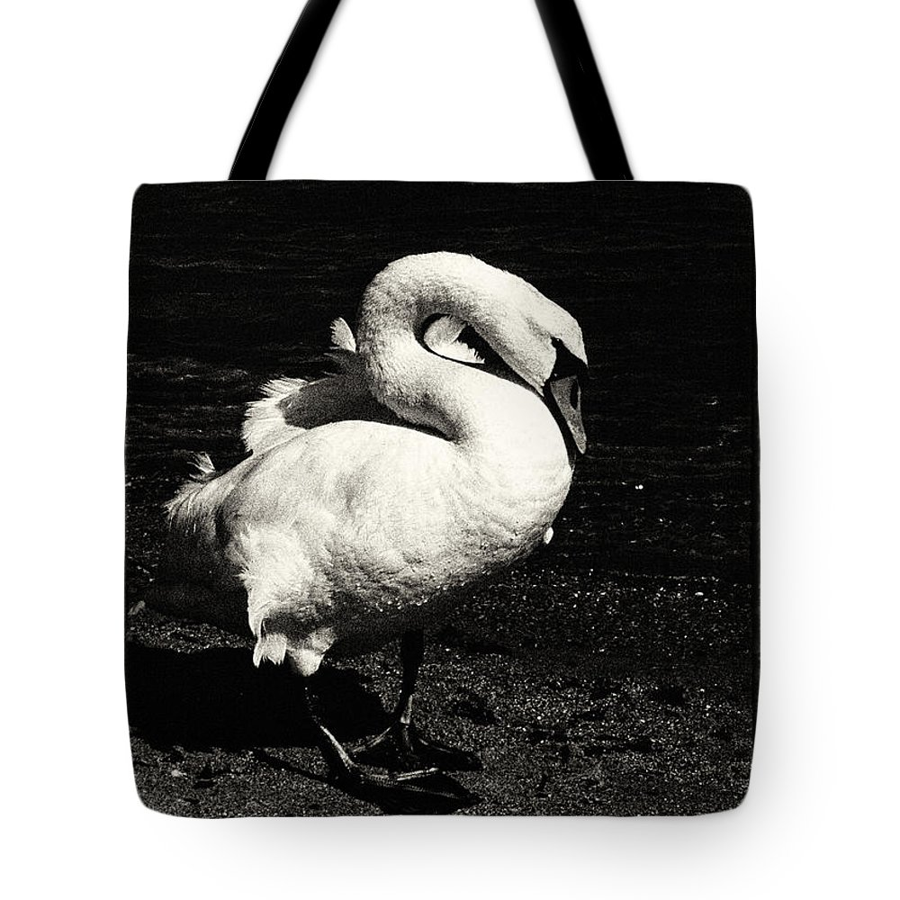 Black Tote Bag featuring the photograph Evening Swan by Hakon Soreide