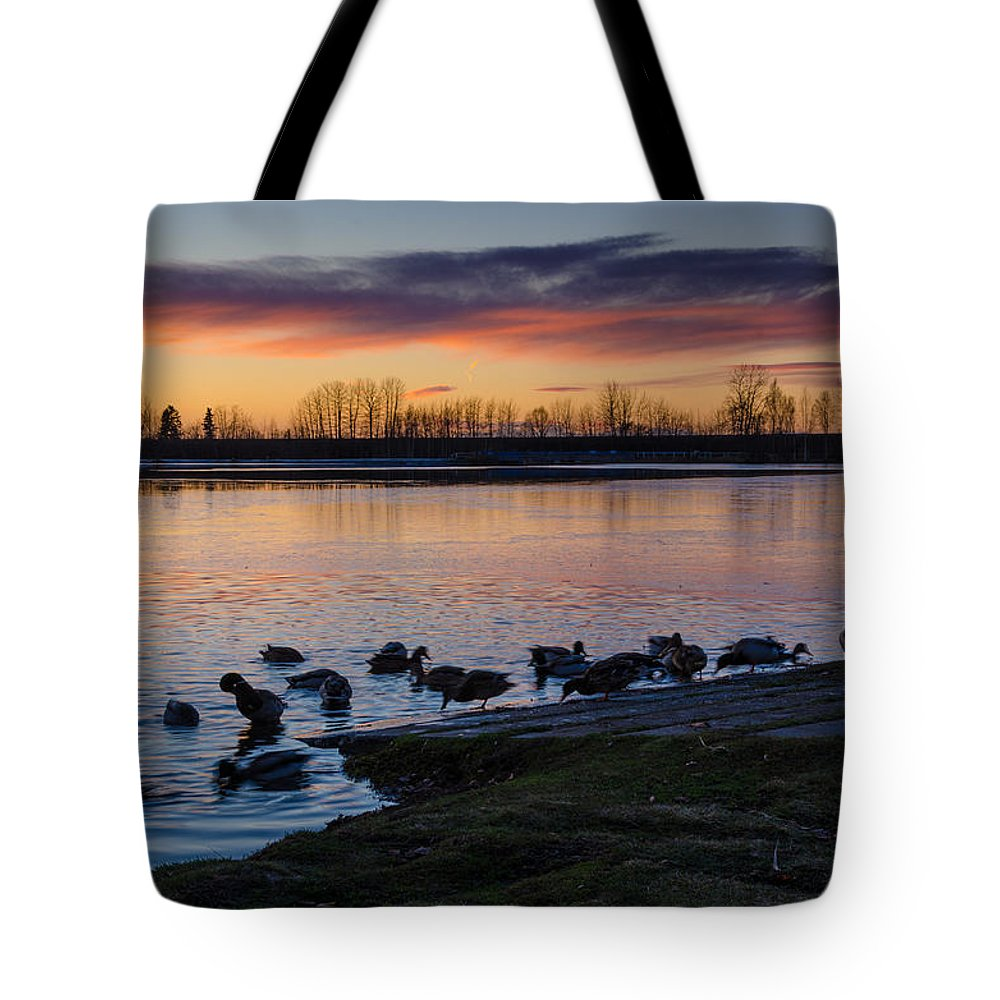 Sunset Tote Bag featuring the photograph Evening Swim by Nikolai Martusheff