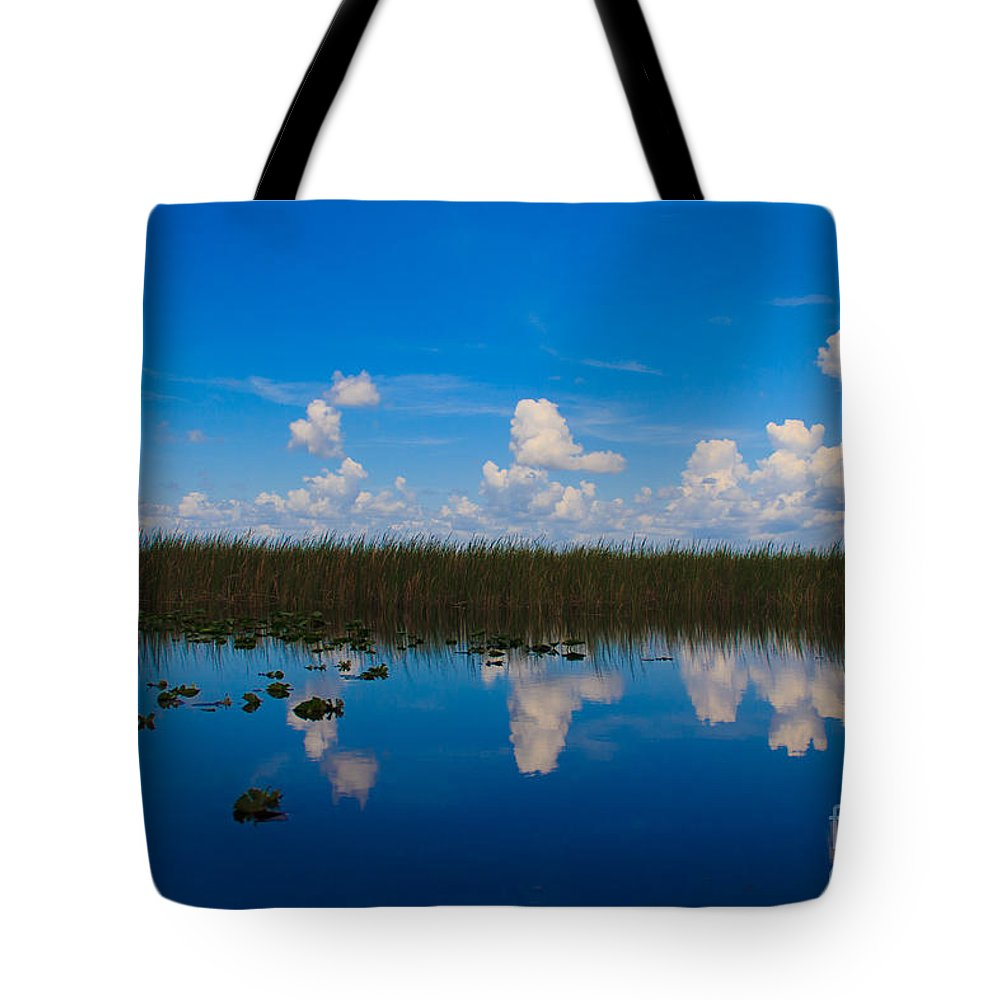 Everglades Tote Bag featuring the photograph Everglades Reflections - 2 by Lucy Raos