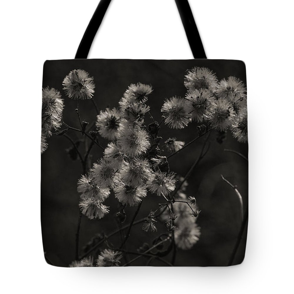Wildflowers Tote Bag featuring the photograph Everlasting by Susan Capuano