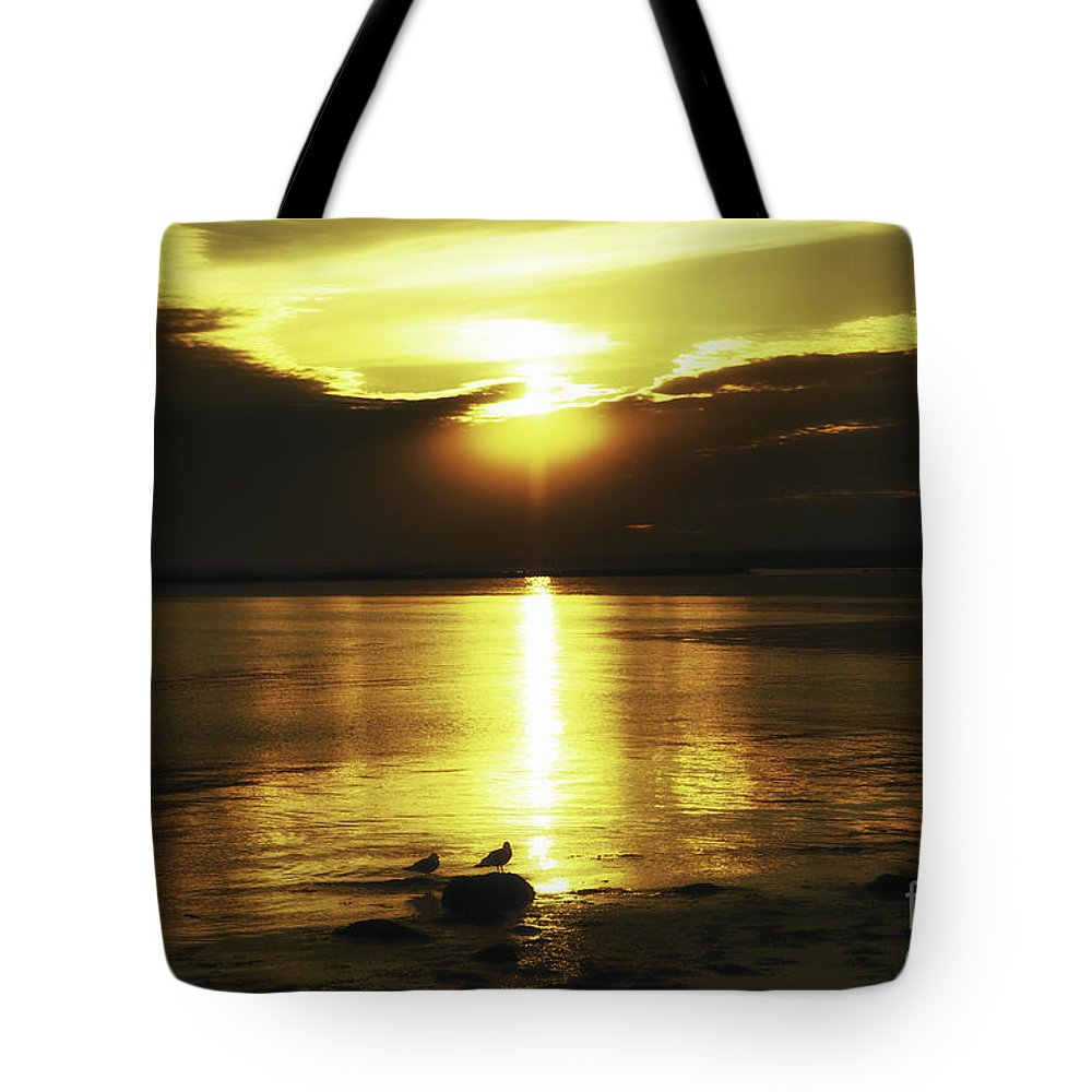 Sun Tote Bag featuring the photograph Exhale by Joe Geraci