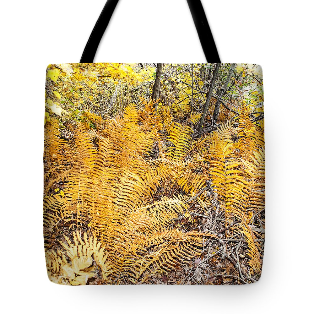 Plants Tote Bag featuring the photograph Exotic Plants Of The Dunes by Verana Stark