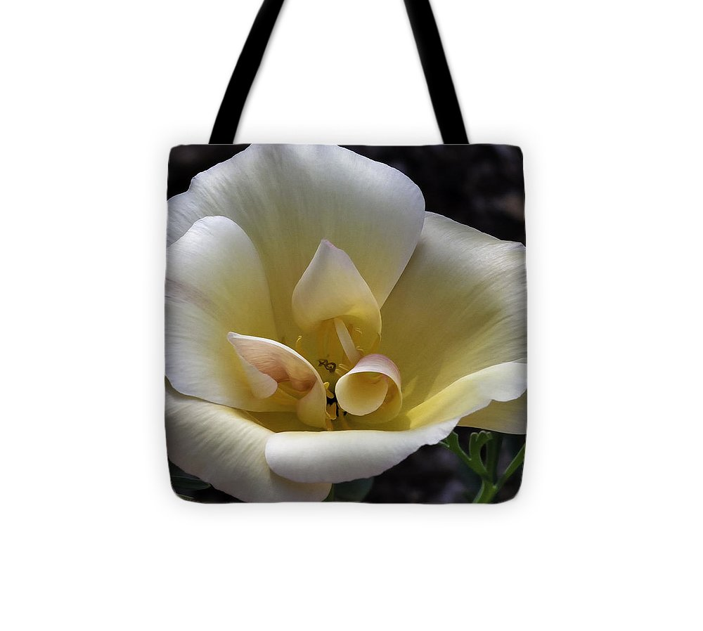 Flower Tote Bag featuring the photograph Exquisite by Lorraine Harrington