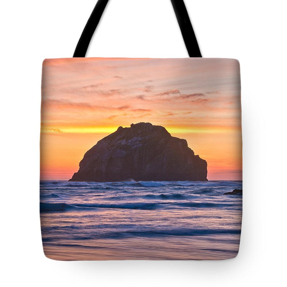 Bandon Tote Bag featuring the photograph Face Time by Patricia Davidson