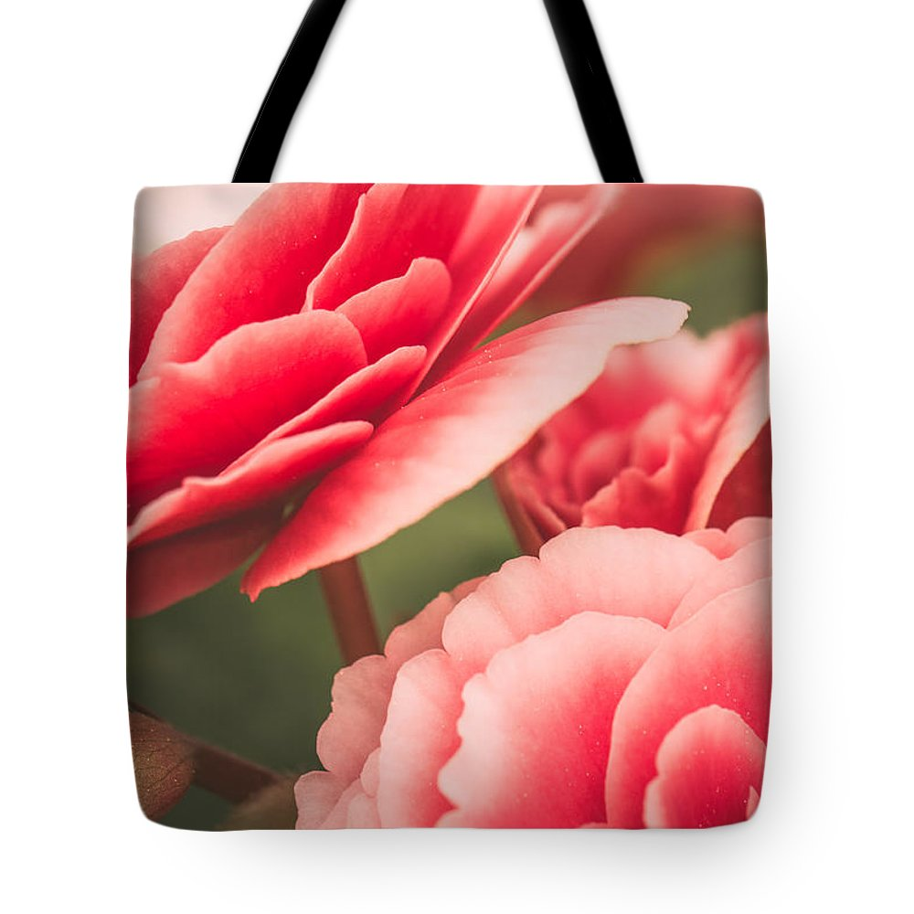 Rose Artwork Tote Bag featuring the photograph Faded Memories by Sara Frank
