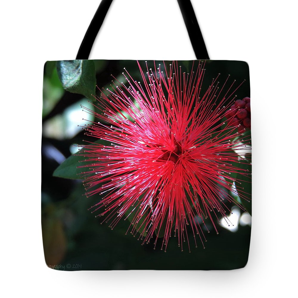 Floral Tote Bag featuring the photograph Fairy Duster by Roe Rader