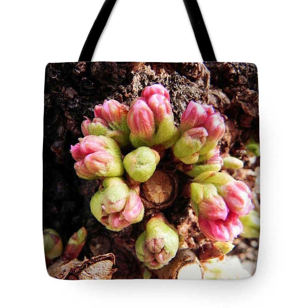 Forest Tote Bag featuring the photograph Fairy Ring by Leah Moore