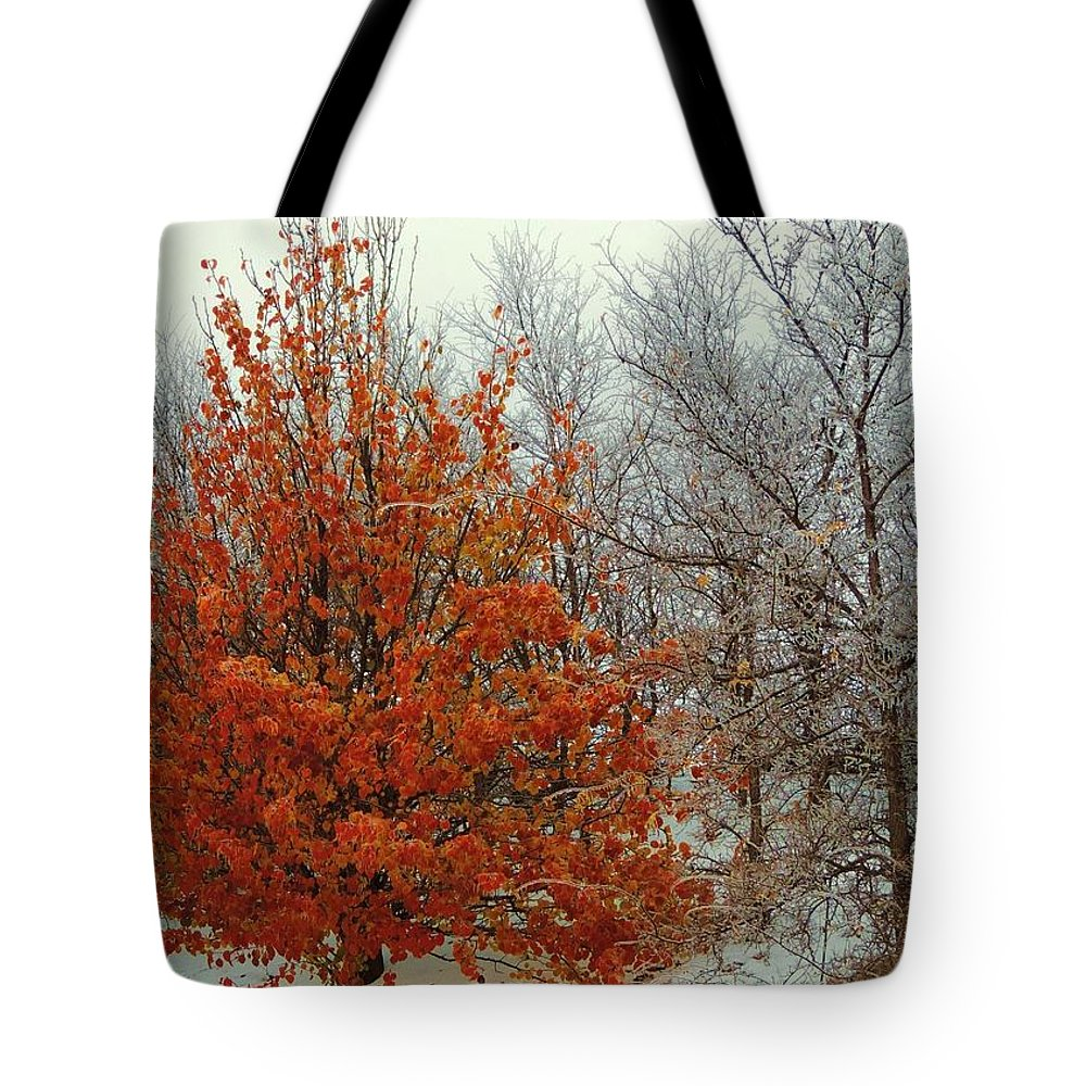 Fall Tote Bag featuring the photograph Fall And Winter 2 by Robert ONeil