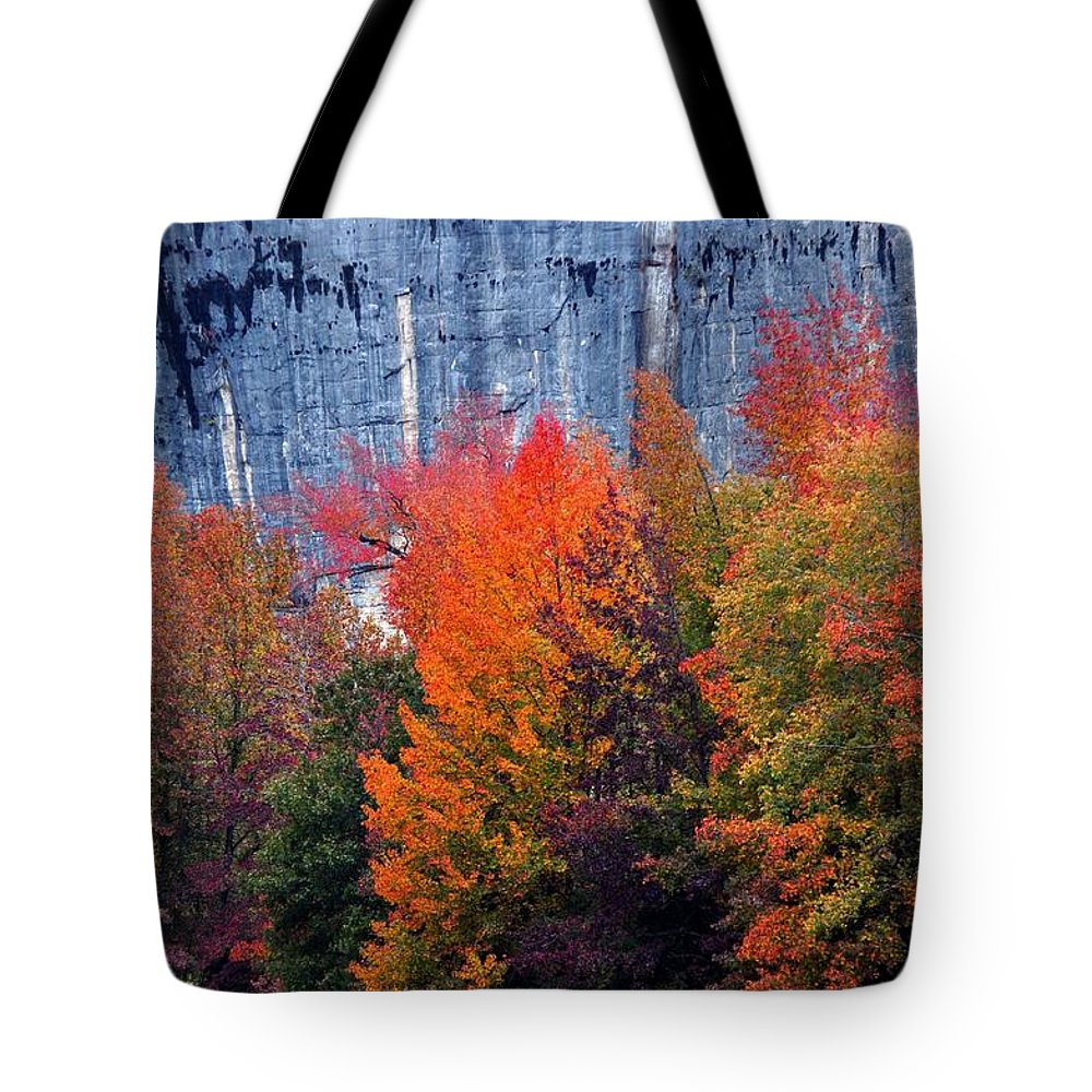Buffalo River Tote Bag featuring the photograph Fall At Steele Creek by Marty Koch