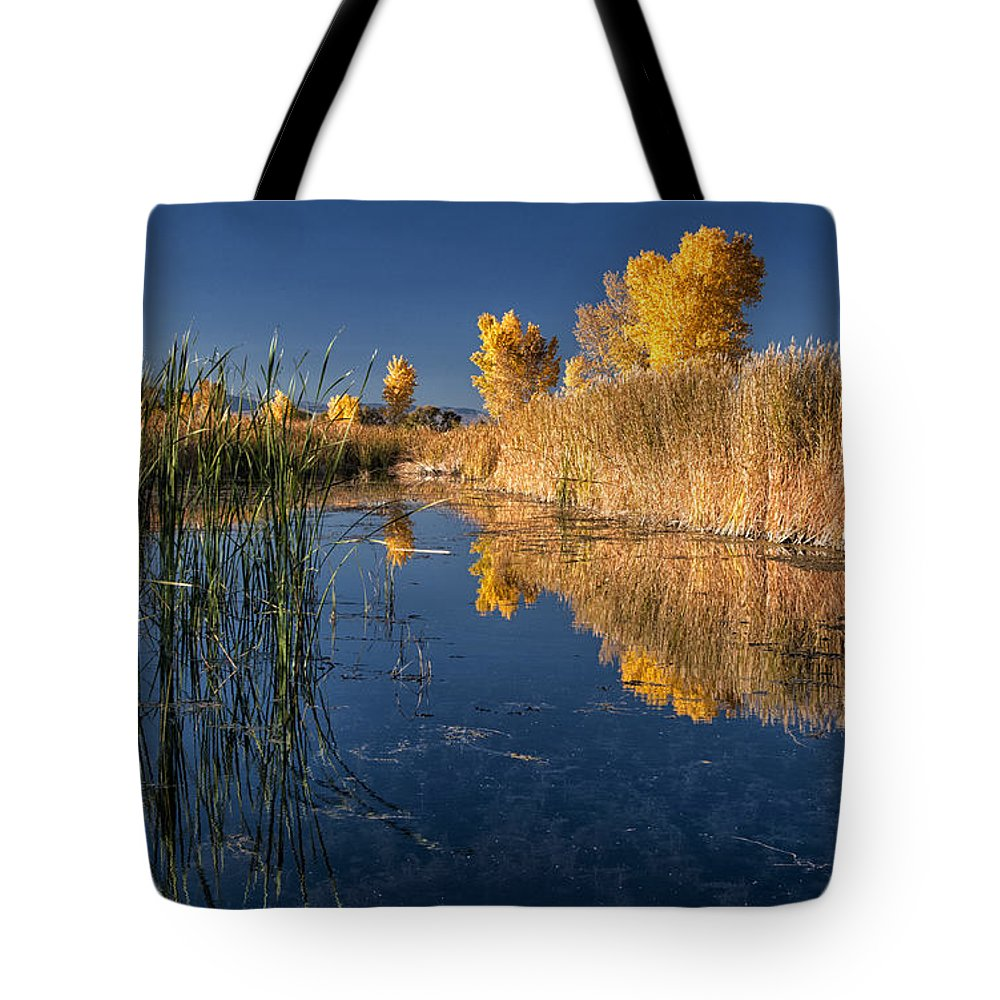 Water Tote Bag featuring the photograph Fall At The Canal by Cat Connor