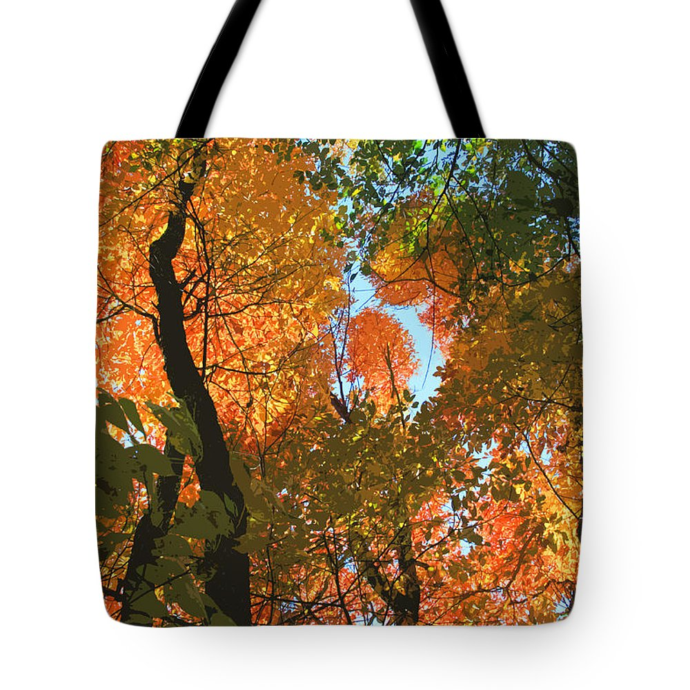 Fall Tote Bag featuring the photograph Fall Beauty by John Lautermilch