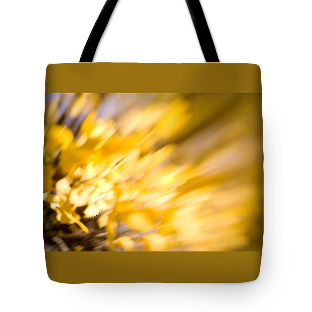 Color Tote Bag featuring the photograph Fall Colors 6730 by Timothy Bischoff