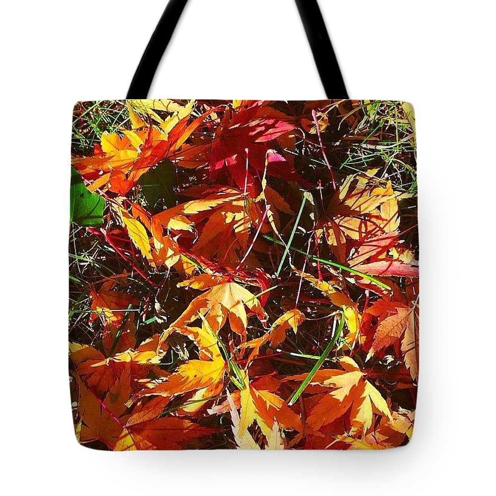 Fall Colors In Annasgardens Tote Bag featuring the photograph Fall Colors in annasgardens by Anna Porter