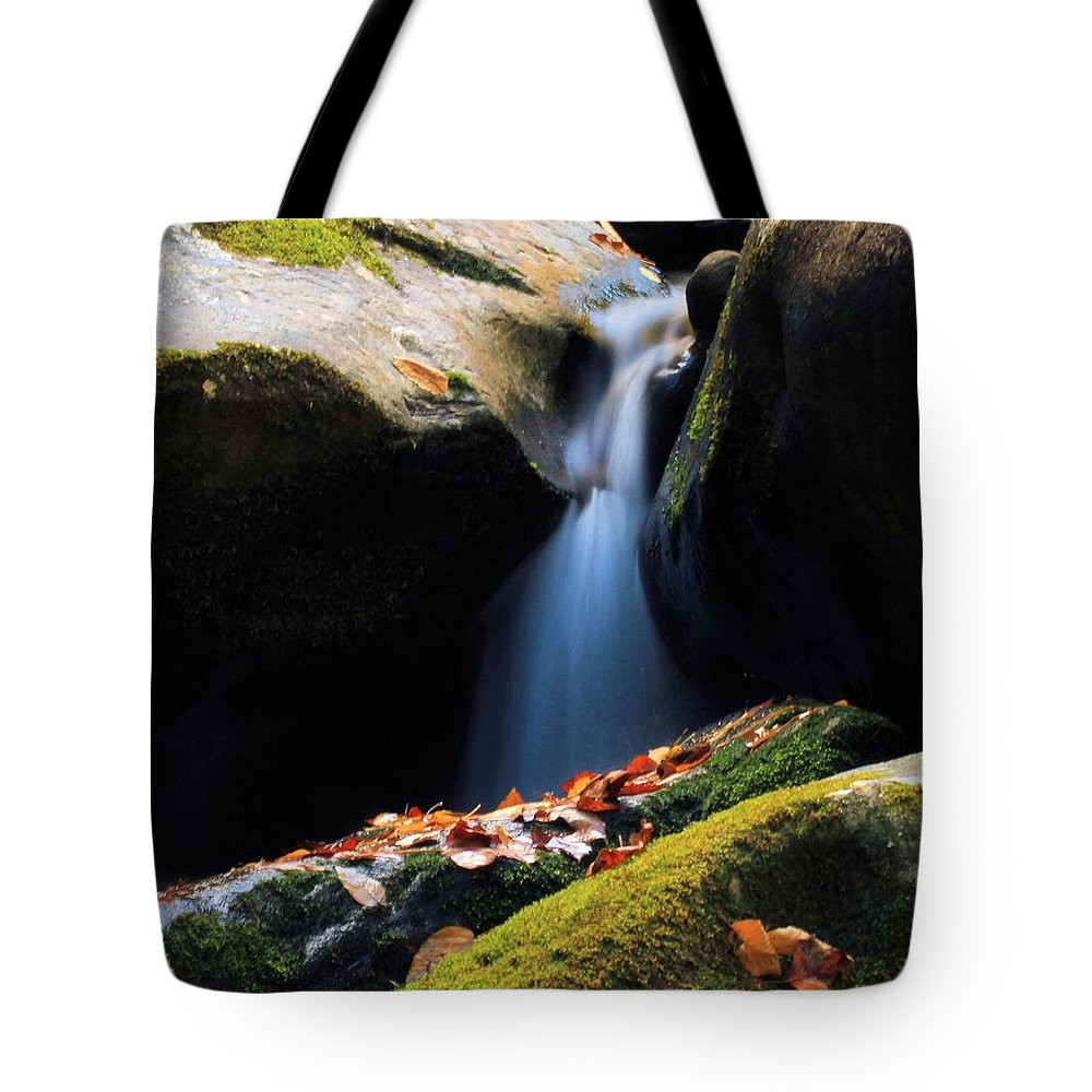 Fall Flow Tote Bag featuring the photograph Fall Flow by Dan Sproul