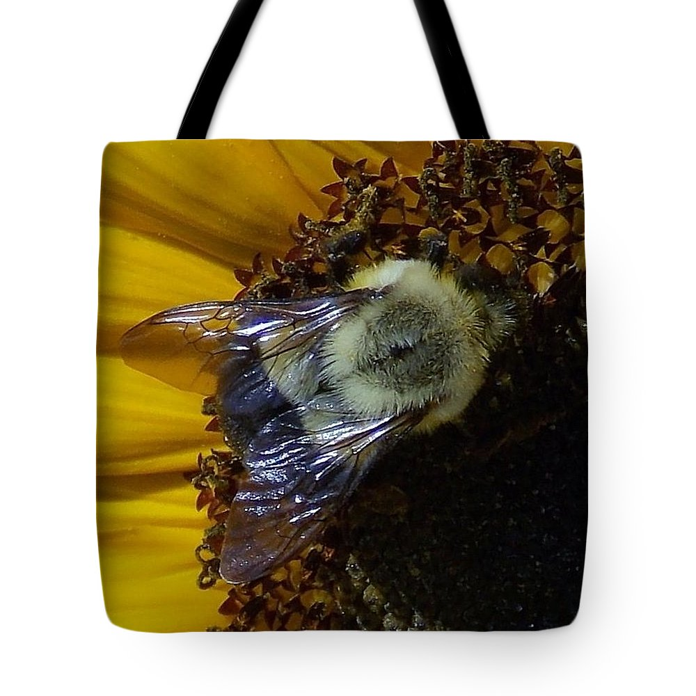 Tote Bag featuring the photograph Fall Harvest by John Glass