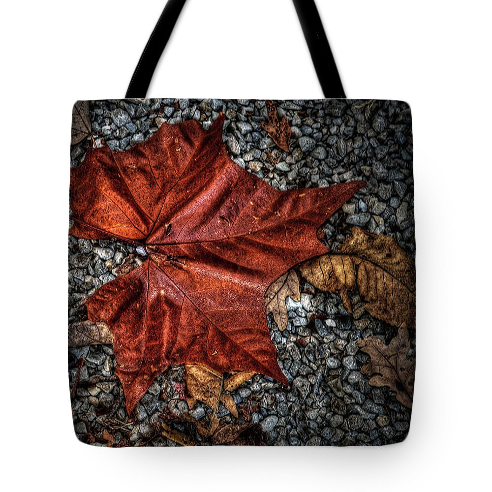 Autumn Tote Bag featuring the photograph Fall Leaf by Sharon Meyer