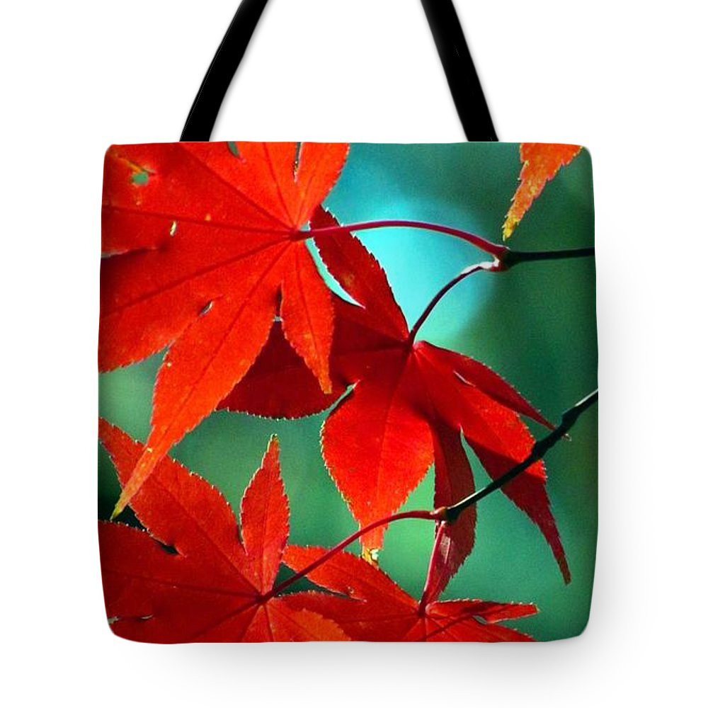 Fall Tote Bag featuring the photograph Fall Leaves In All Their Glory by Carol Montoya