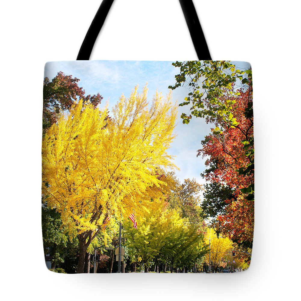 The Esplanade Tote Bag featuring the photograph Fall On The Esplanade by Abram House