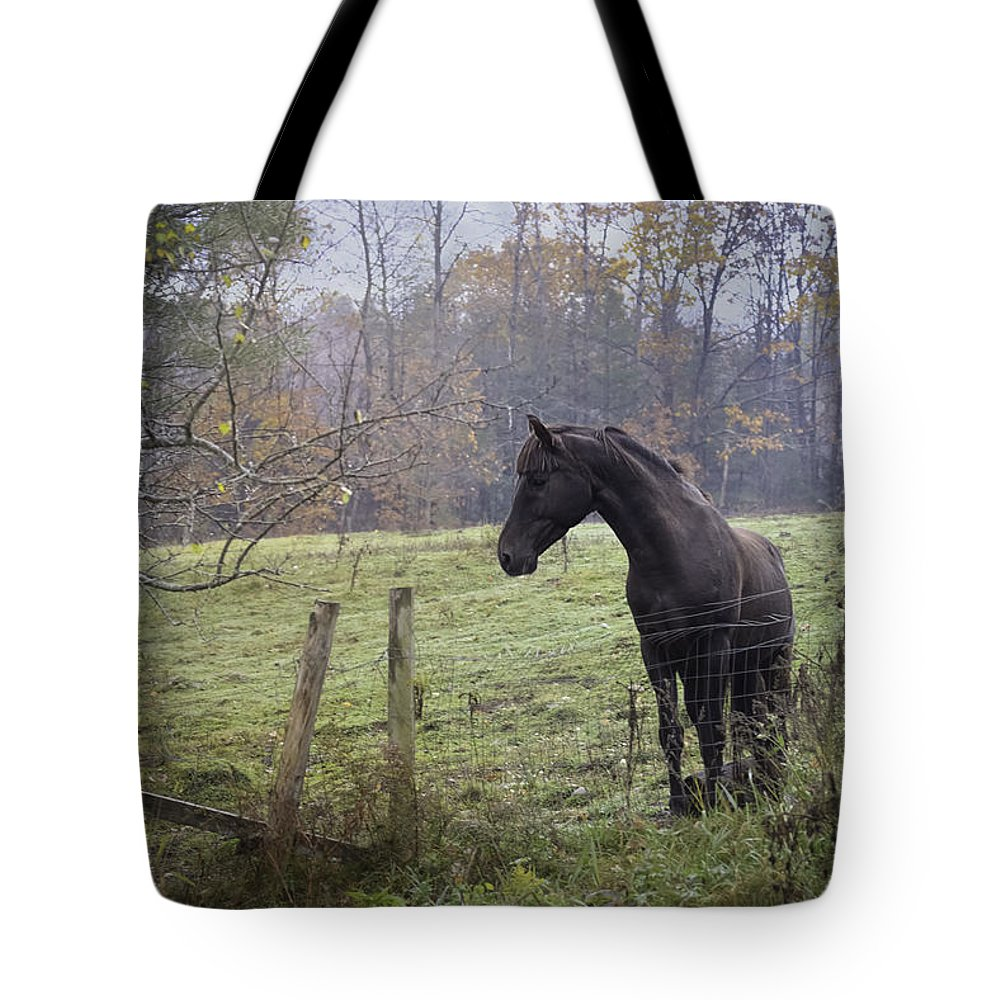 Horse Tote Bag featuring the photograph Fall Pasture by Lisa Bryant