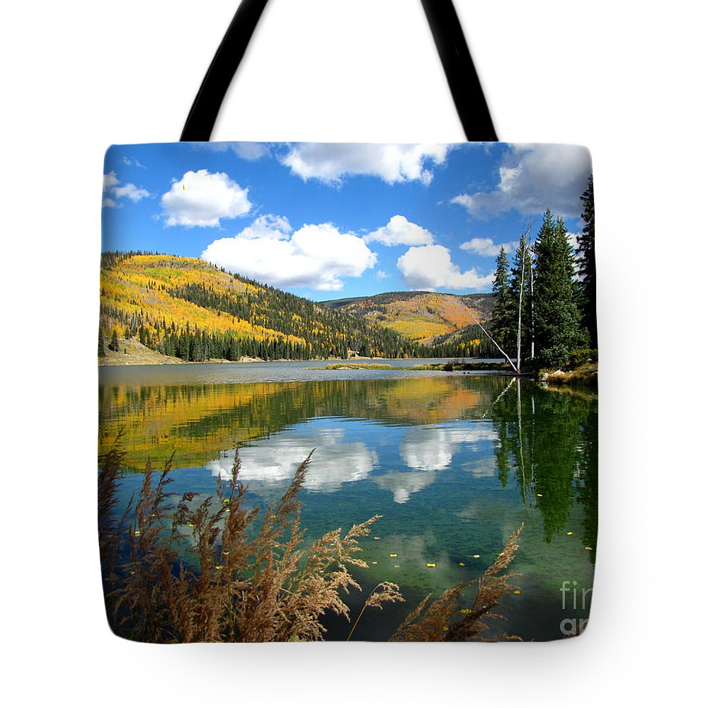 Fall Tote Bag featuring the photograph Fall Reflections by Carol Milisen