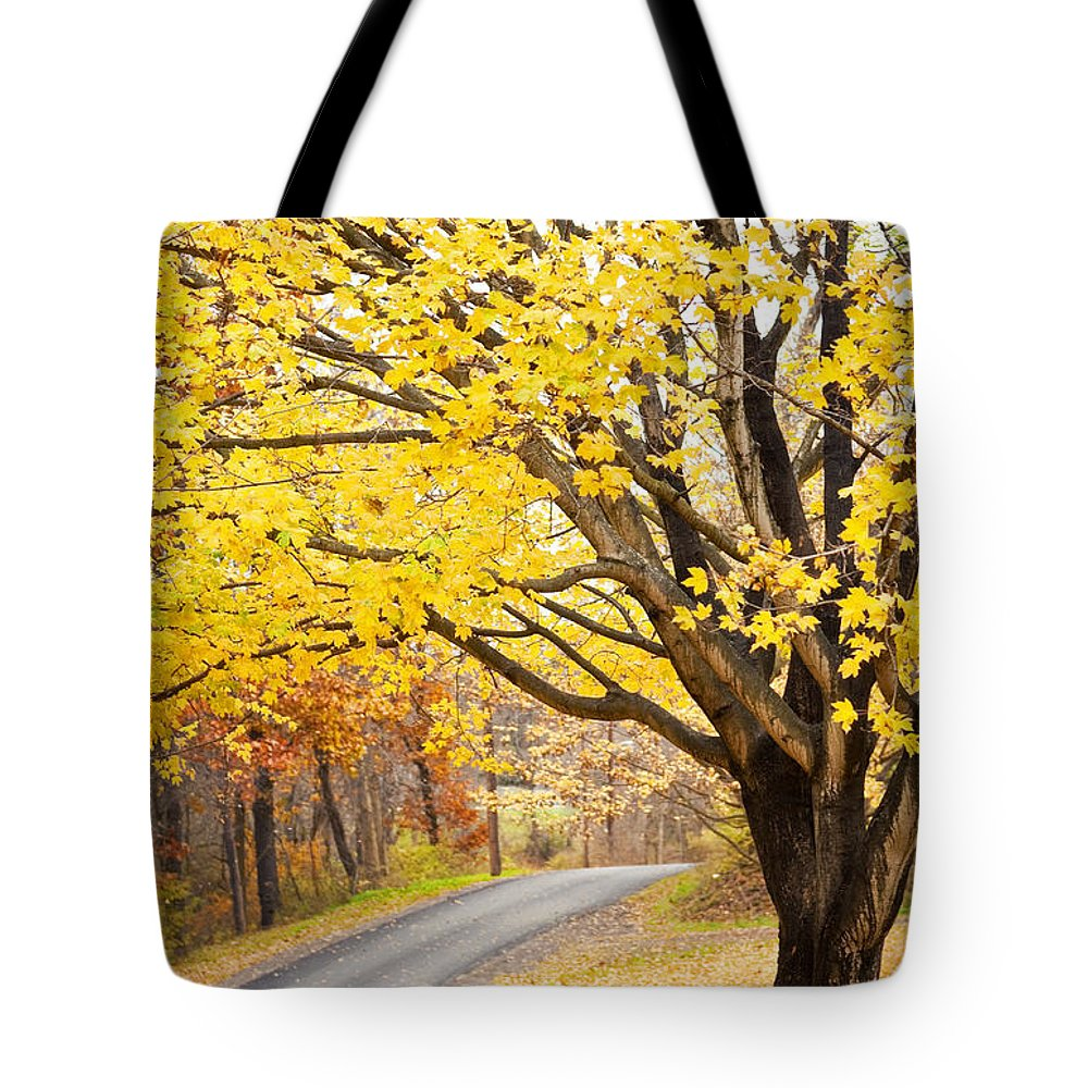 Fall Tote Bag featuring the photograph Fall Road by Sharon Dominick