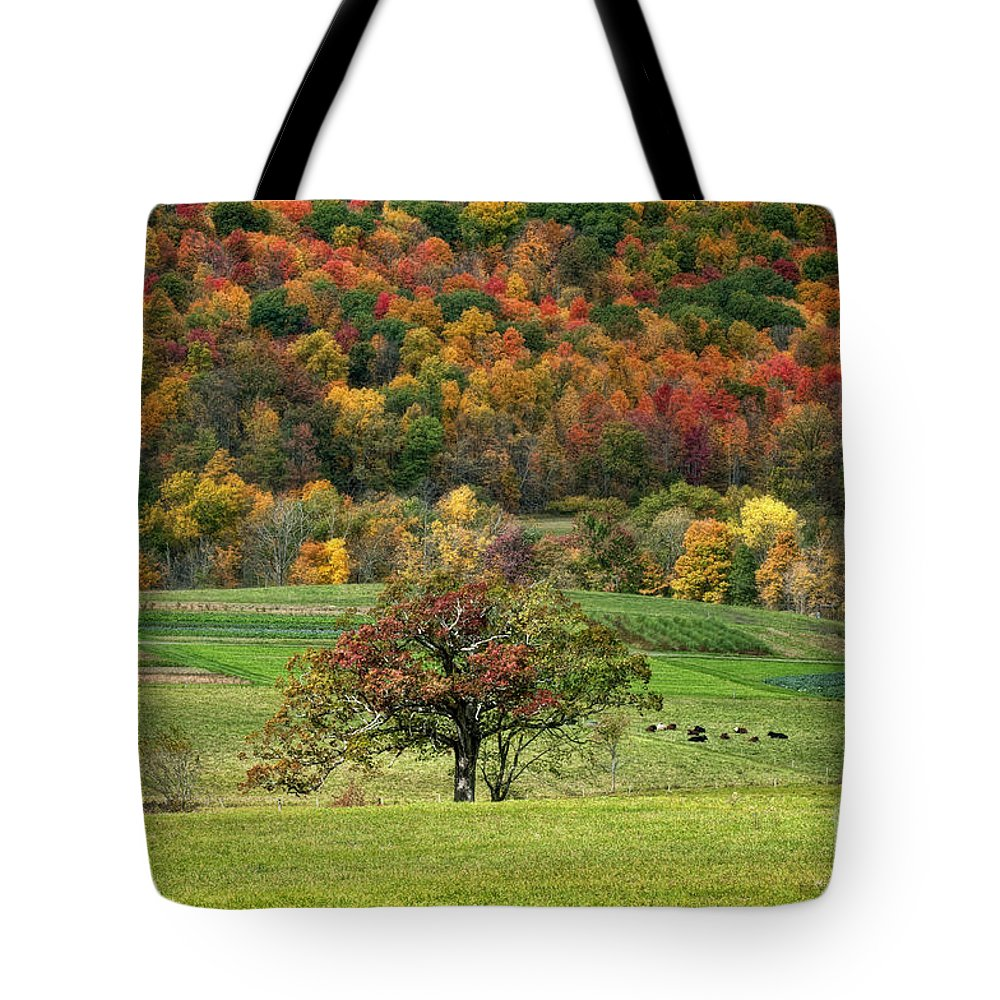 Autumn Tote Bag featuring the photograph Fall Splendor by Claudia Kuhn