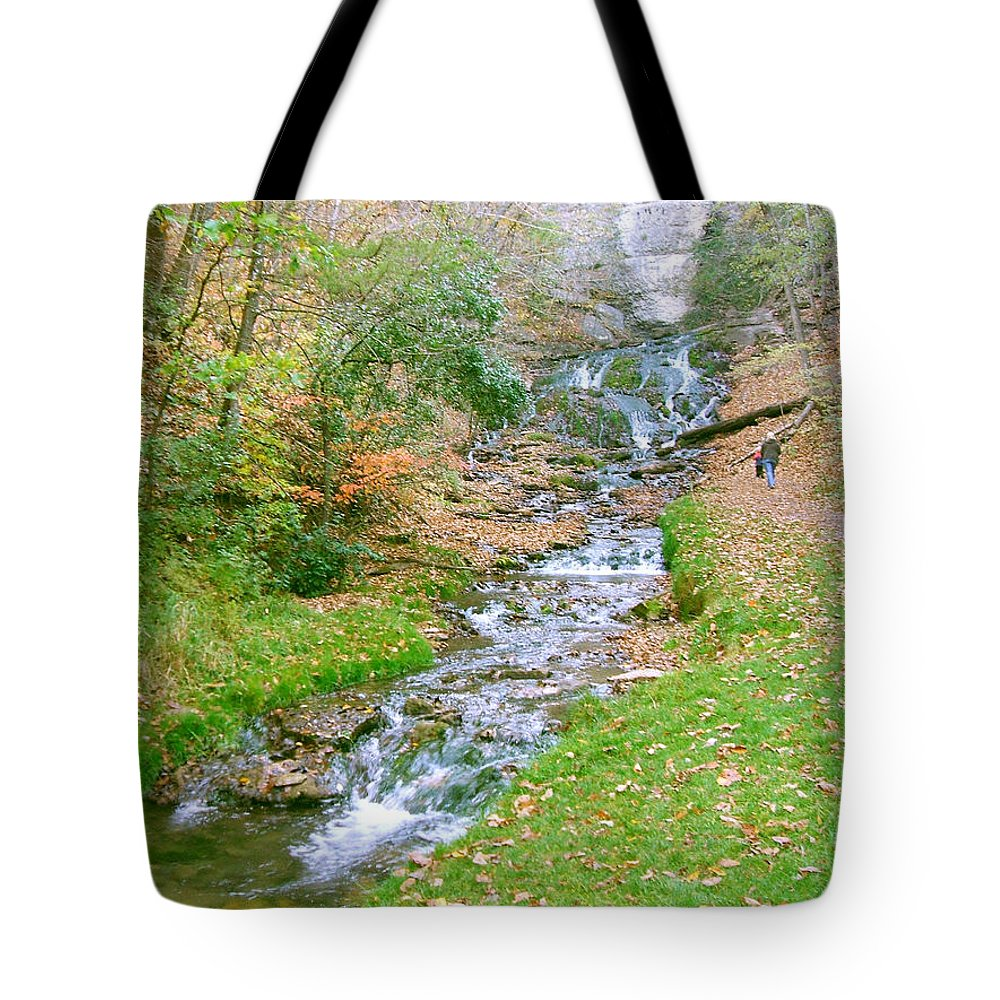 Springs Tote Bag featuring the photograph Fall Springs by Minding My Visions by Adri and Ray