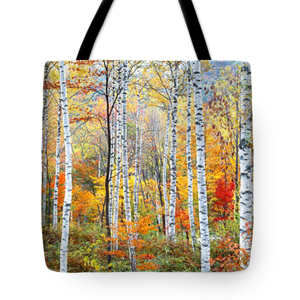 Photography Tote Bag featuring the photograph Fall Trees, Shinhodaka, Gifu, Japan by Panoramic Images