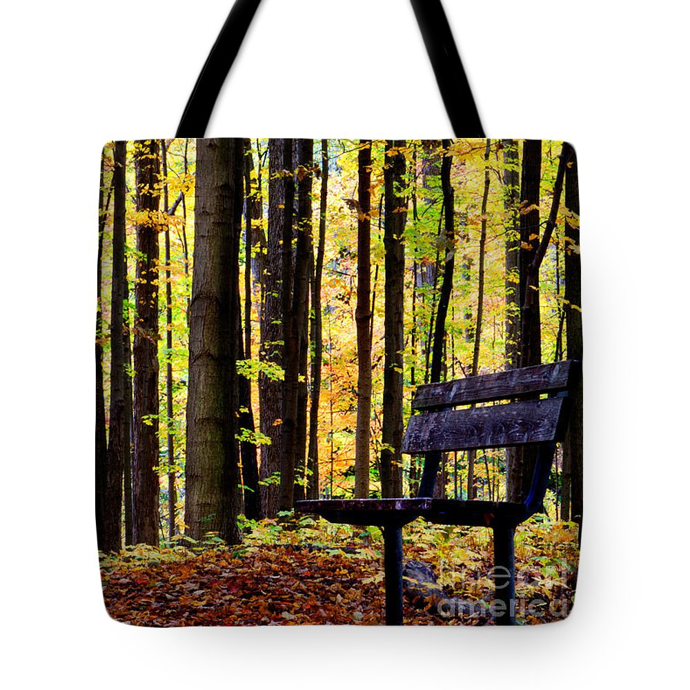 Leaves Tote Bag featuring the photograph Fall Woods In Michigan by Michael Arend