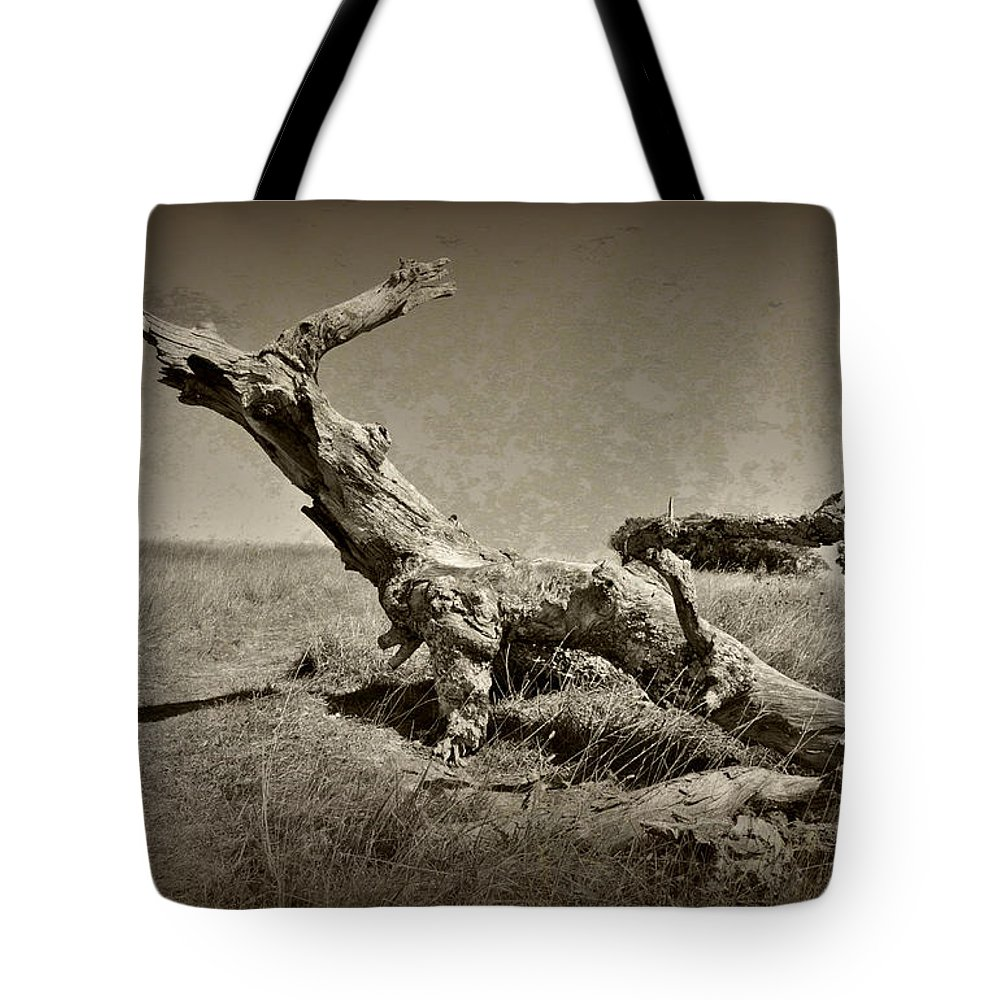 Tree Tote Bag featuring the photograph Fallen by Kelly Nowak