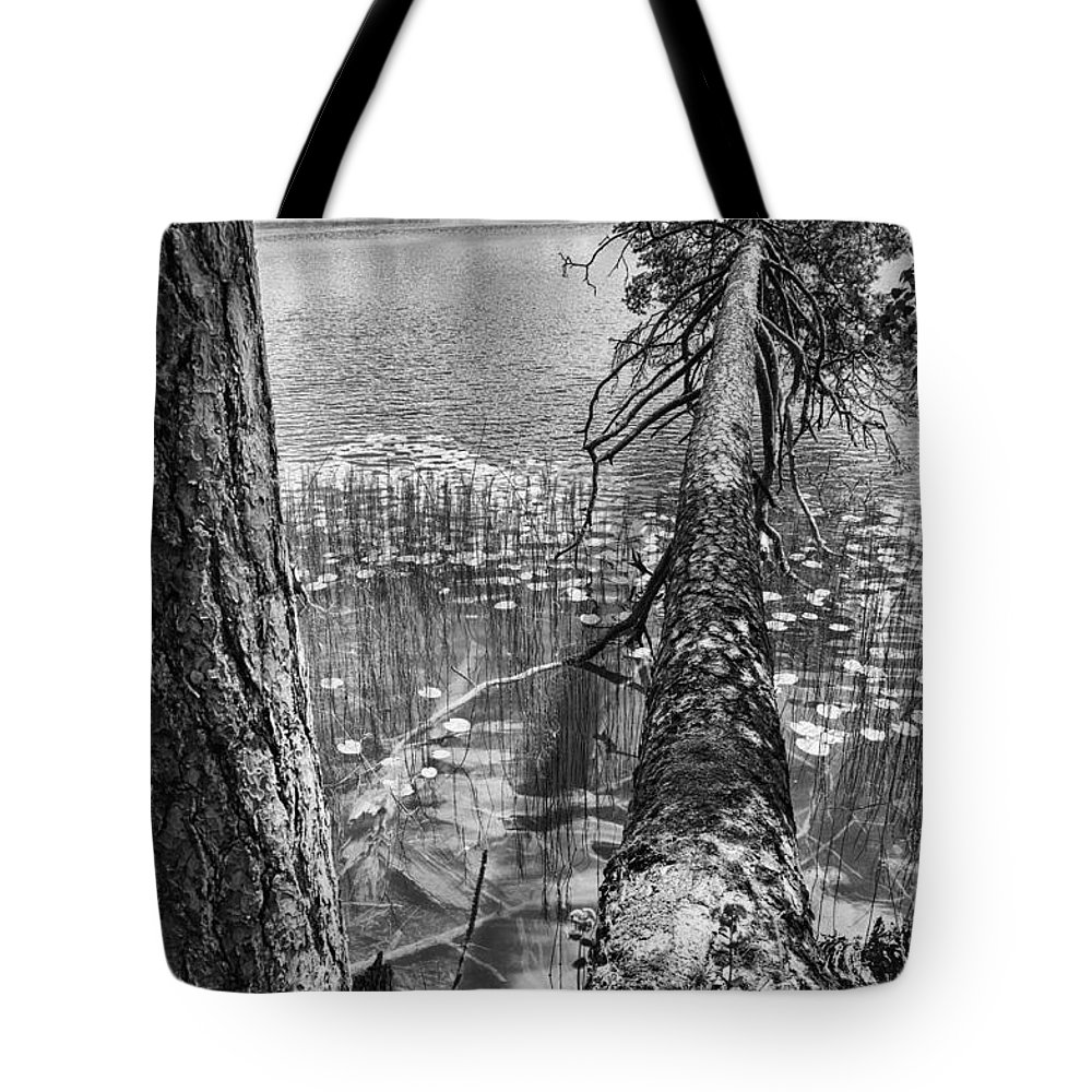 Flora Tote Bag featuring the photograph Fallen by Yevgeni Kacnelson