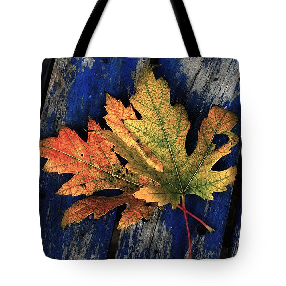 Nature Tote Bag featuring the photograph Falling For Colour by Linda Sannuti