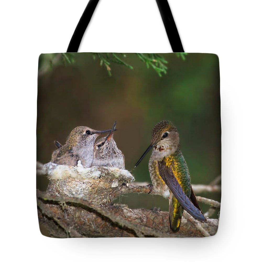Hummingbird Tote Bag featuring the photograph Family Love by Beth Sargent