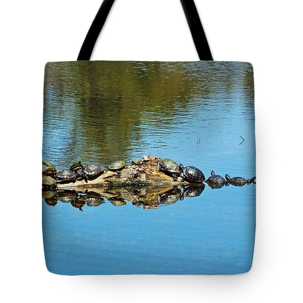 Animal Tote Bag featuring the photograph Family Of Turtles by Cynthia Guinn