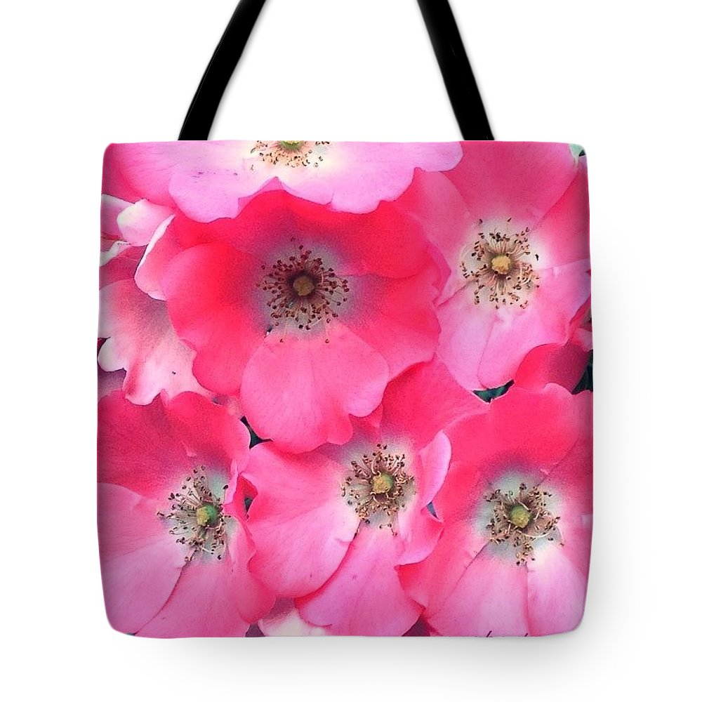 Trellis Pinks Tote Bag featuring the photograph Trellis Pinks by Anna Porter