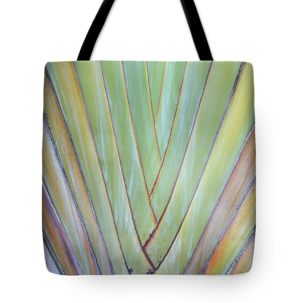 Duane Mccullough Tote Bag featuring the photograph Fan Palm Abstract 2 by Duane McCullough
