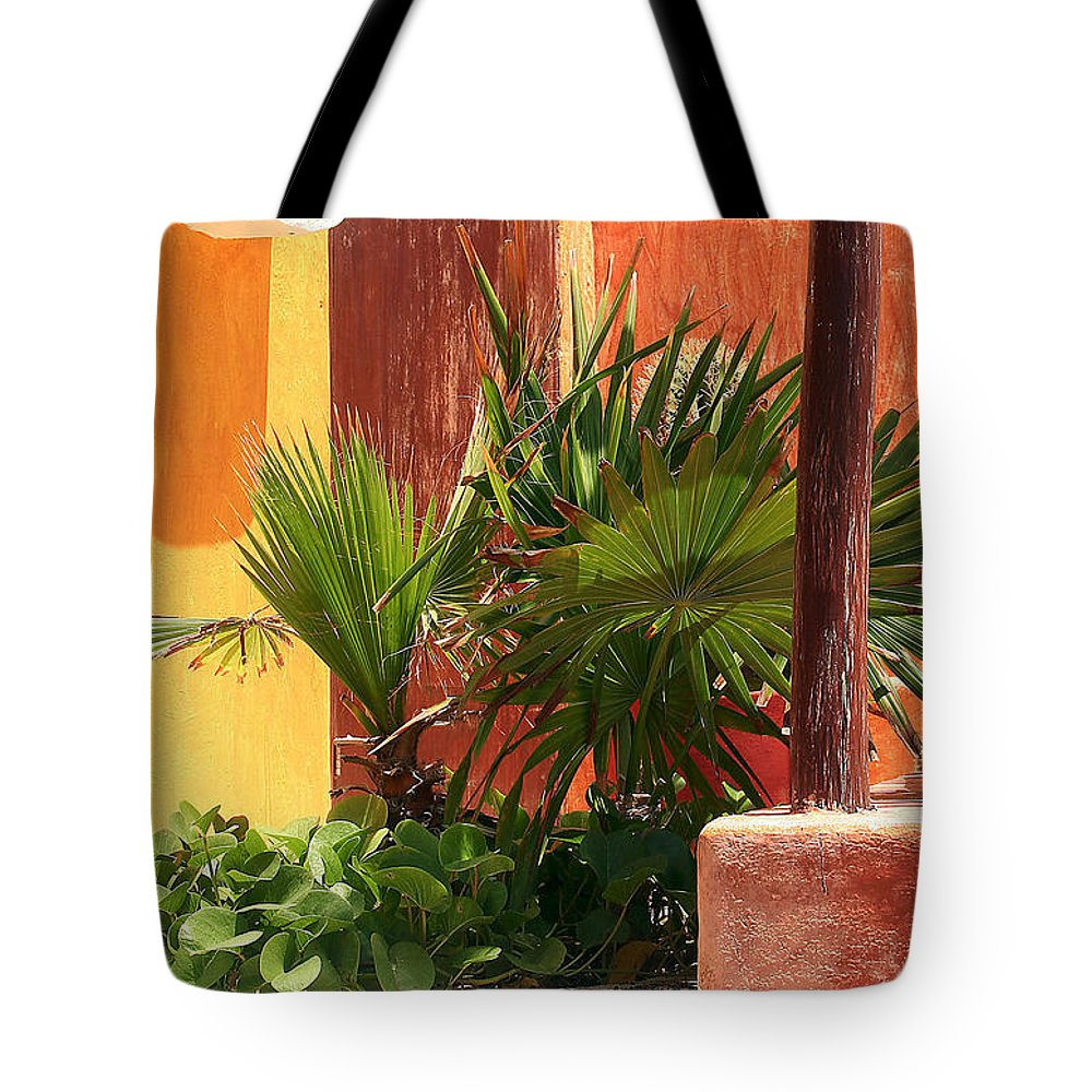 Palm Tote Bag featuring the photograph Fan Palm On Patio by Jack Thomas