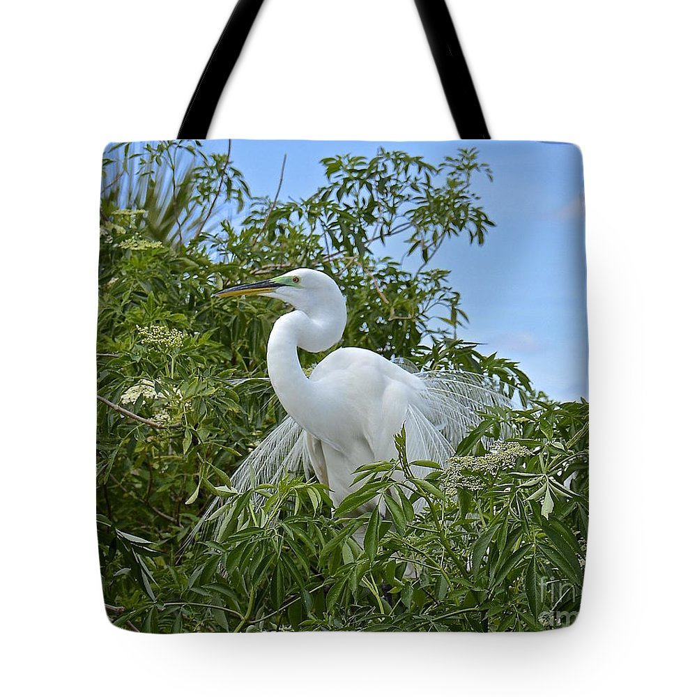 Egret Tote Bag featuring the photograph Fancy by Carol Bradley