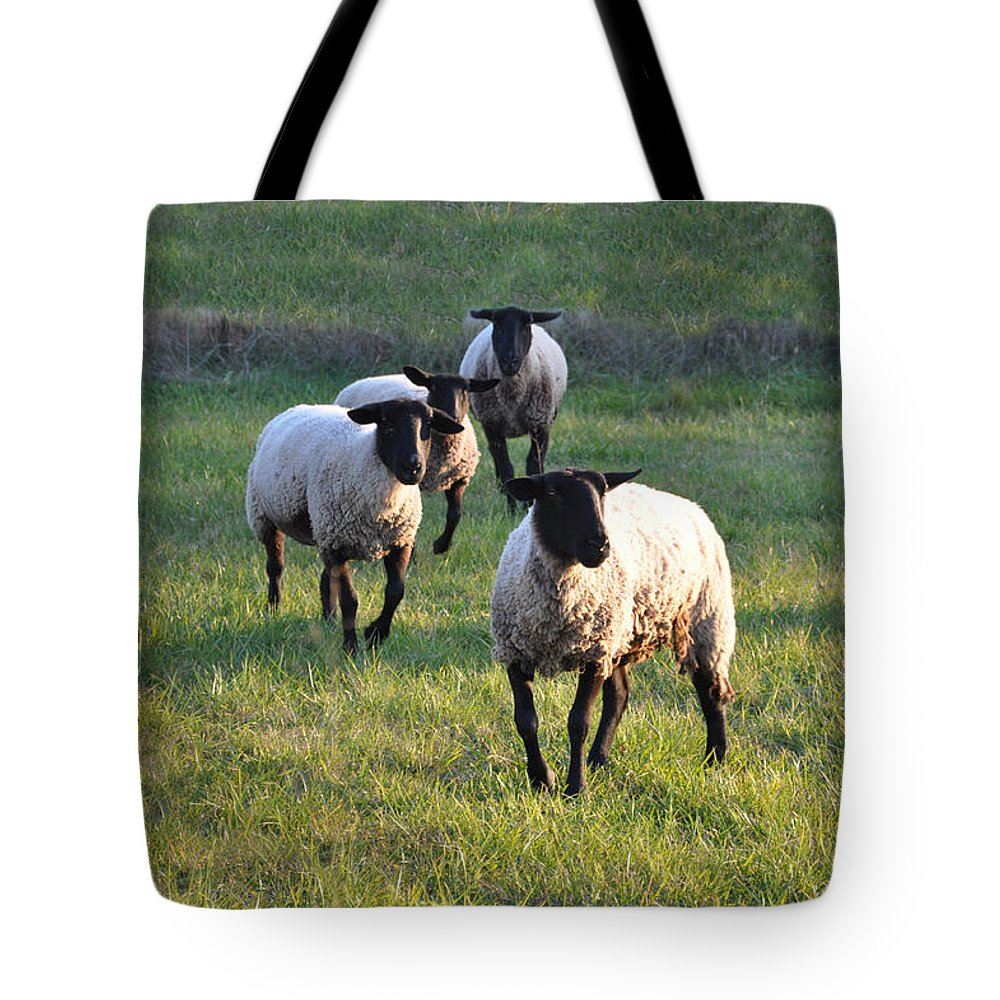 Animals Tote Bag featuring the photograph Fancy Free by Jan Amiss Photography