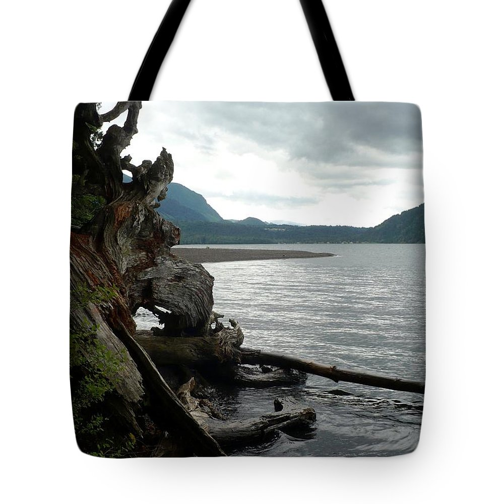 Waterscape Tote Bag featuring the photograph Far Beyond Imagination by Nicki Bennett
