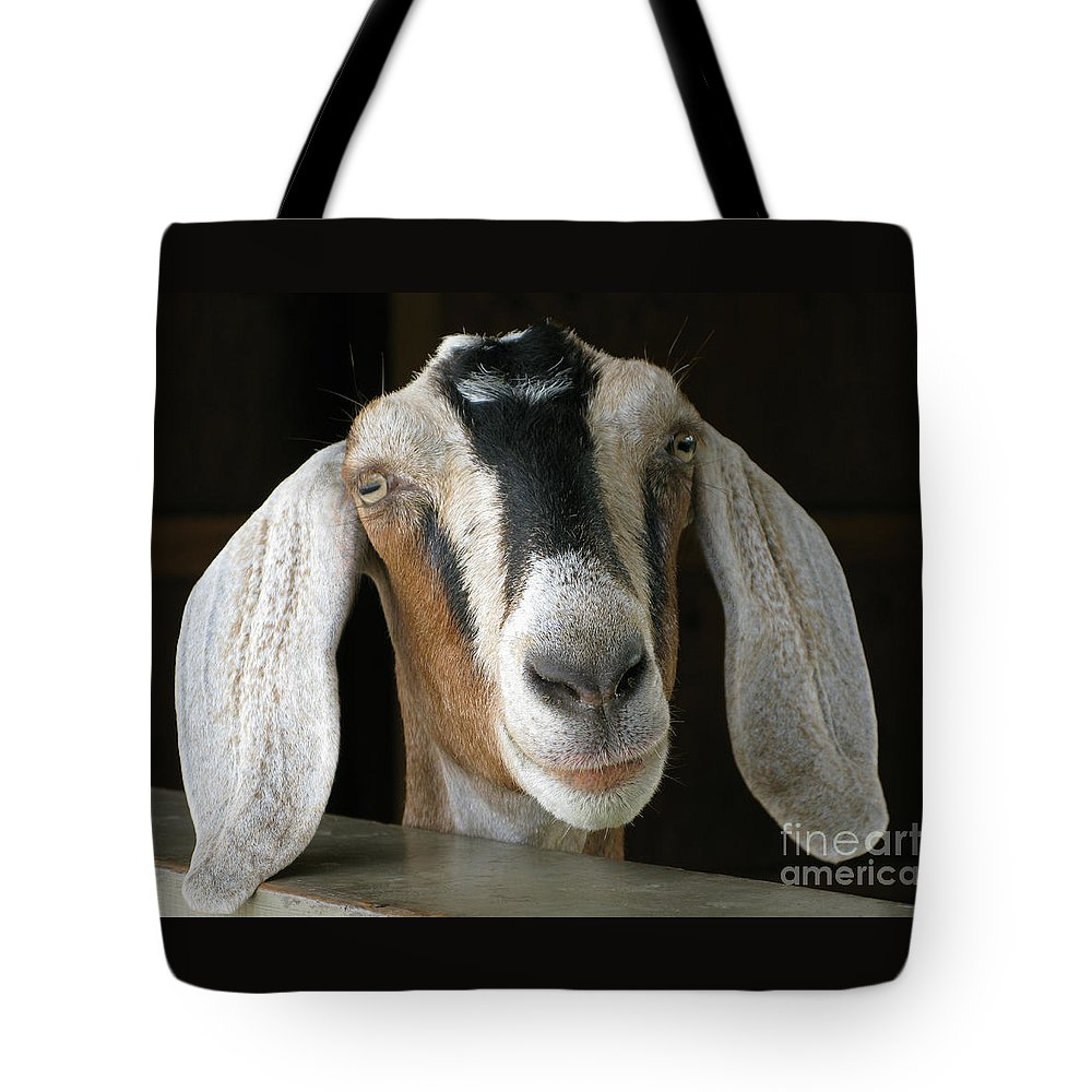 Goat Tote Bag featuring the photograph Farm Favorite by Ann Horn