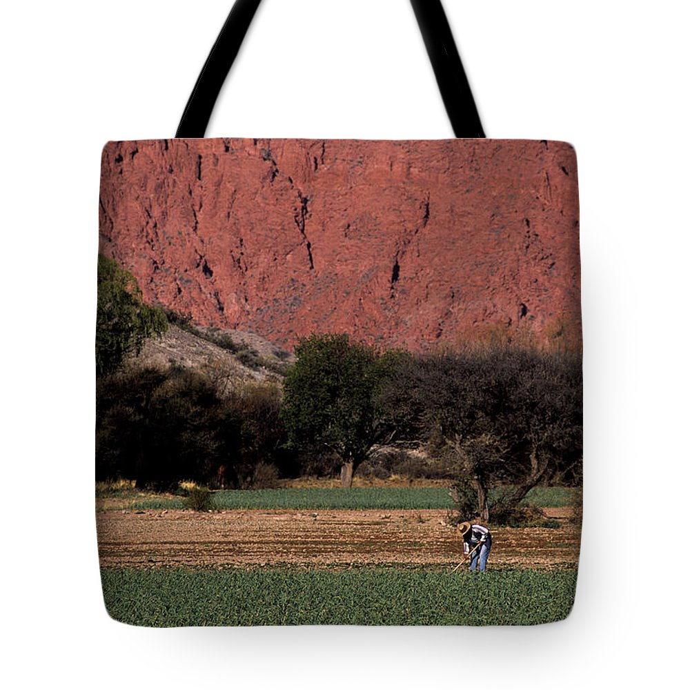 Argentina Tote Bag featuring the photograph Farmer In Field In Northern Argentina by James Brunker