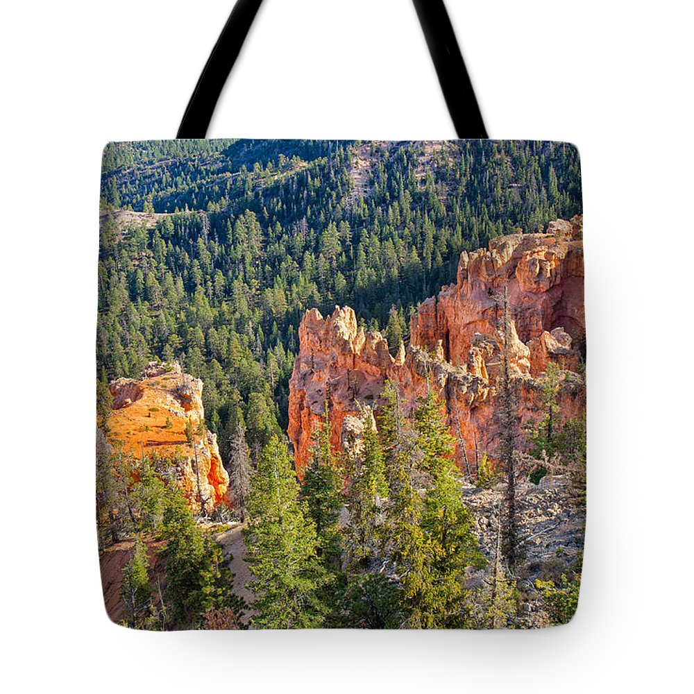 Landscape Tote Bag featuring the photograph Farview Point Overlook by John M Bailey