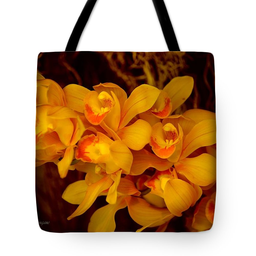 Fascinating Beauty Tote Bag featuring the photograph Fascinating Beauty by Sonali Gangane