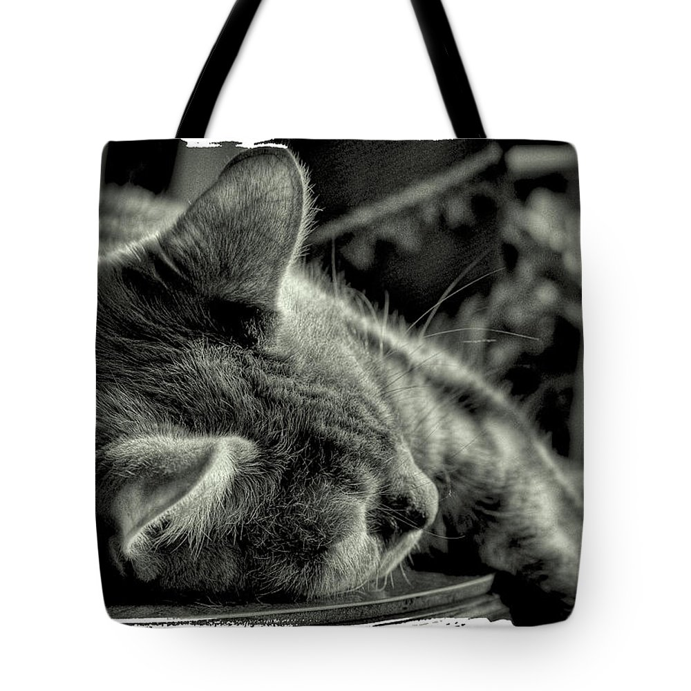Cat Tote Bag featuring the photograph Fatigued Feline by David Patterson