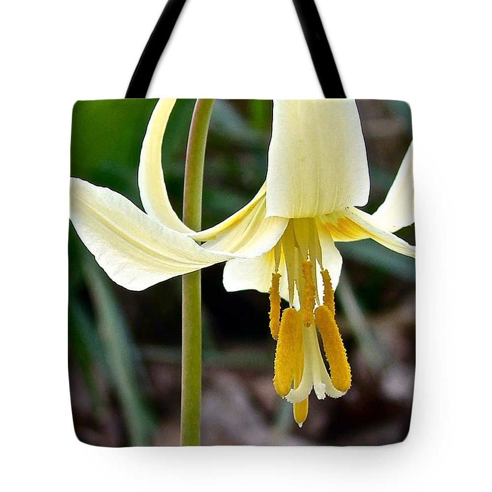 Fawn Lily Tote Bag featuring the digital art Fawn Lily by Gary Olsen-Hasek