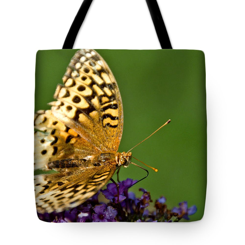 Tote Bag featuring the photograph Feasting by Cheryl Baxter