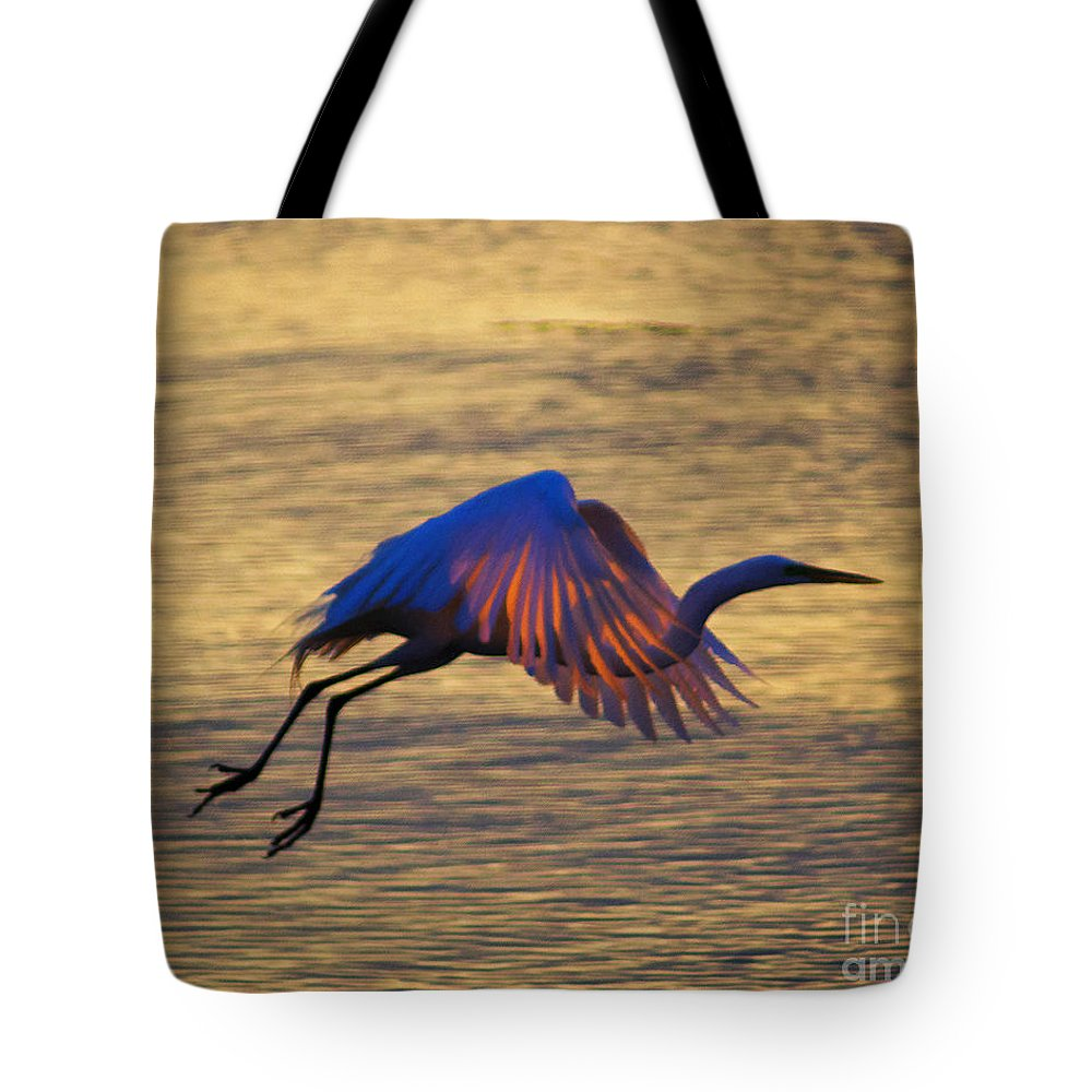 Egret Tote Bag featuring the photograph Feather-light by Joe Geraci